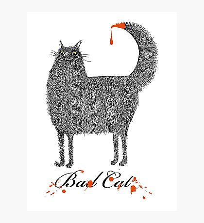 Bad Cat Photographic Print