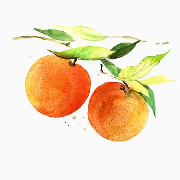 Watercolor oranges by Anutina