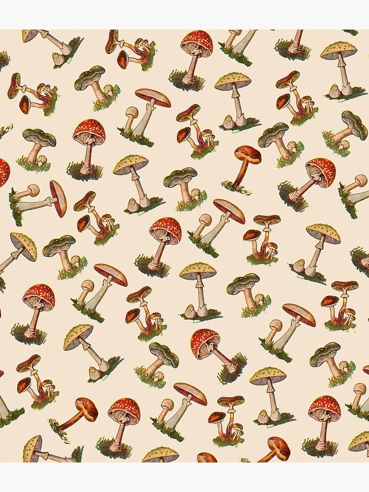 Mushrooms by notsniwart