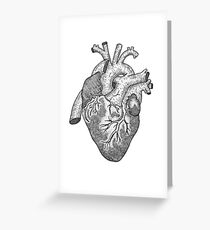 Anatomical Heart Ink Illustration Greeting Card