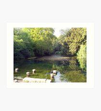 Lake in Surrey Art Print