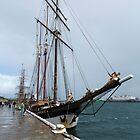 """Dutch Tall Ship """"Oosterschelde by Nigel Donald"""