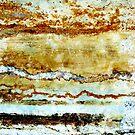 Arctic Dawn by Kathie Nichols