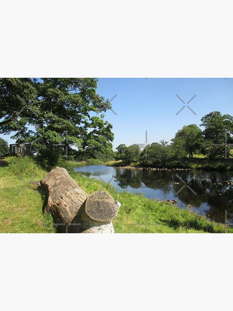 Merch #97 -- Stream Between Trees - Shot 6 (Hadrian's Wall) by Naean