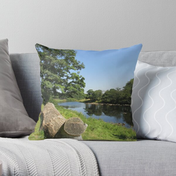 Merch #97 -- Stream Between Trees - Shot 6 (Hadrian's Wall) Throw Pillow