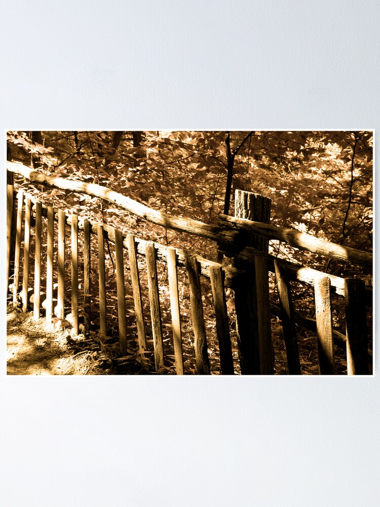 Alternate view of Fences Poster