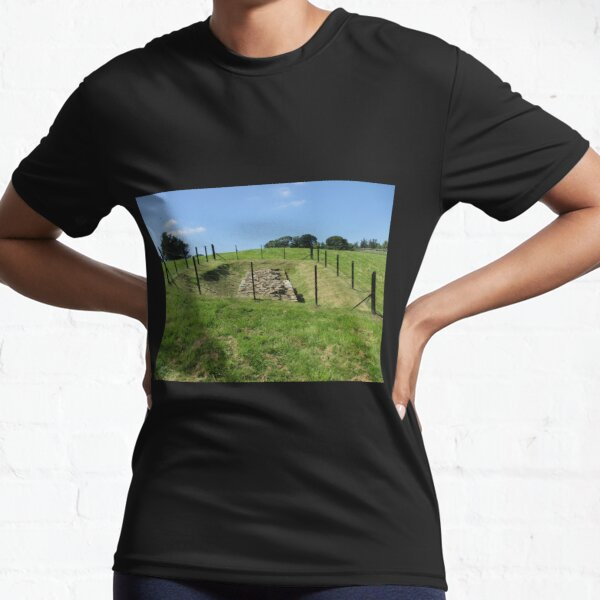 Merch #100 -- Fenced Off Rock Remains (Hadrian's Wall) Active T-Shirt