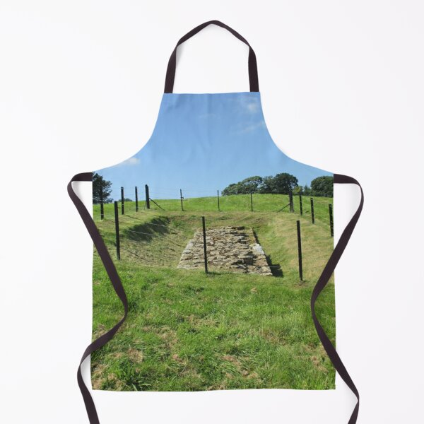 Merch #100 -- Fenced Off Rock Remains (Hadrian's Wall) Apron
