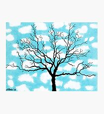 TREE IN THE CLOUDS Photographic Print
