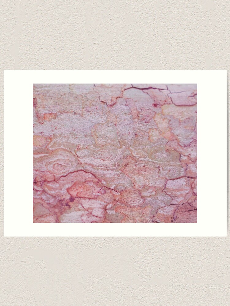 Alternate view of Texture pink stone structure Art Print