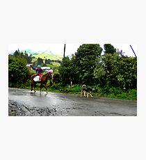 Neither Rain Nor Sleet - Painting Photographic Print