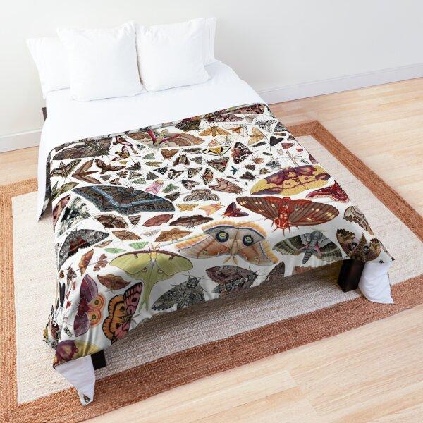 Moths of North America Pattern Comforter