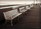 Boardwalk by Briana McNair