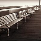 Boardwalk by Briana McNair