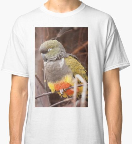 Patagonian Conure Classic T-Shirt
