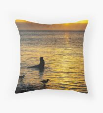 Sunset on Rabida Island Throw Pillow