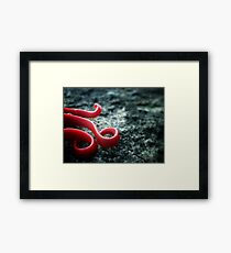 Gone for now... Framed Print