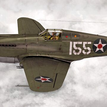 Curtiss P-40 Warhawk  by Skyviper