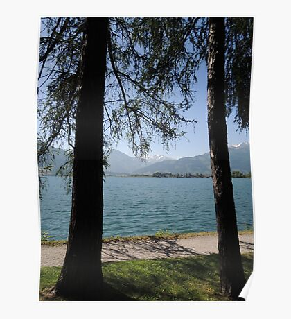 Zell Am See: Lake Through Trees Poster