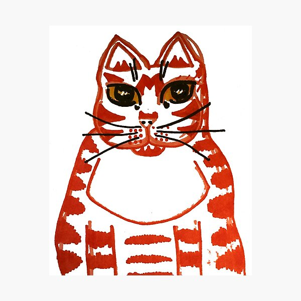 Ruby the Marmalade cat Photographic Print