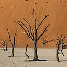 Sossussvlei Trees by IngridSonja