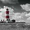 All About Lighthouses  ~2 per Day~