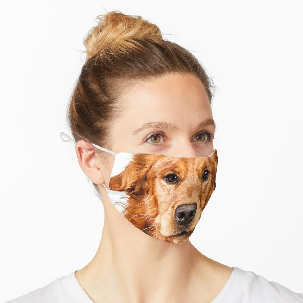 Golden Retriever face design Mask