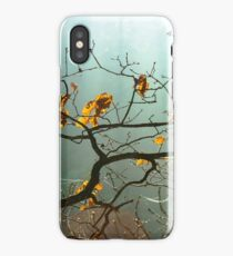 Winter tree silhouette in great fog, natur concept iPhone Case/Skin