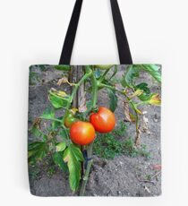 Almost Ripe Tomatoes Tote Bag