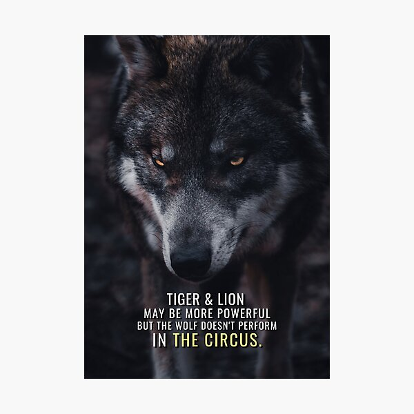 Wolf doesn't perform in the Circus Photographic Print
