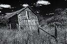 Old Shed V - B&W by PhotosByHealy