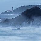 Lennard Island Lighthouse by Carrie Cole