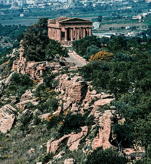 Temple of Concord from nr Temple of Juno Agrigento Sicily 19840326 0023 by Fred Mitchell