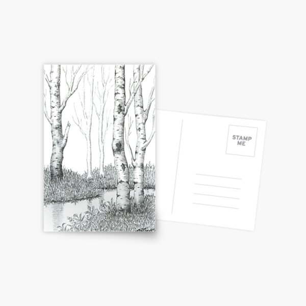 BIRCH TREE 02 Postcard