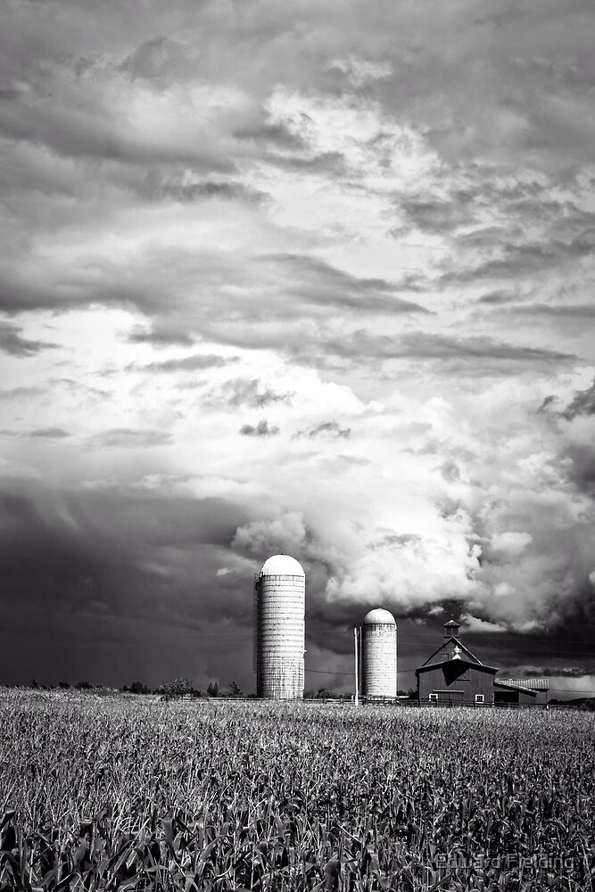Stormy Weather on the Farm by Edward Fielding