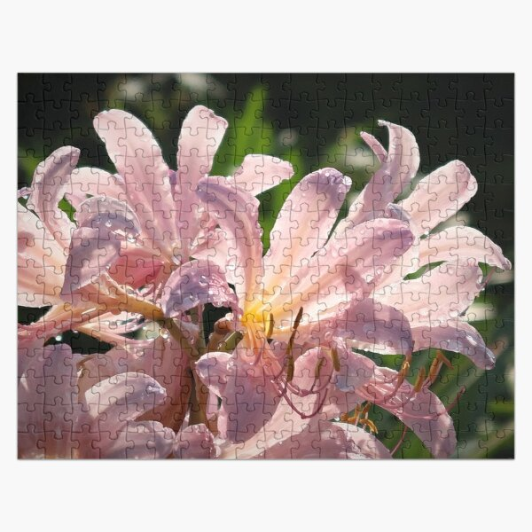 Pink Lilies with Sparkly Dew  Jigsaw Puzzle
