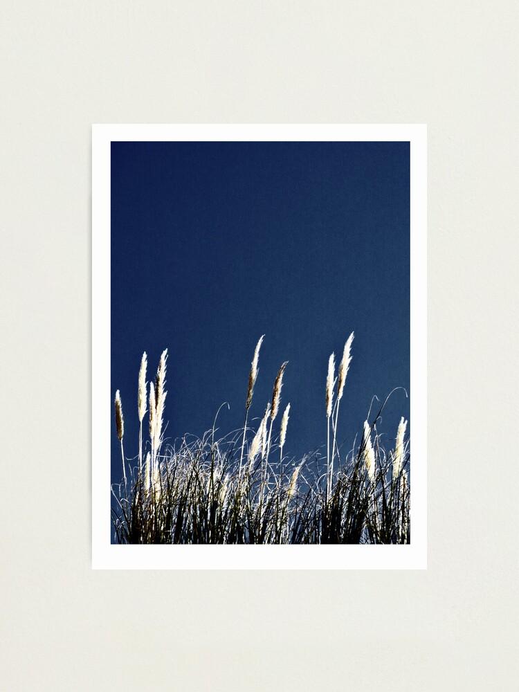 Alternate view of Bluegrass Photographic Print