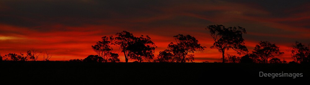 Darling Downs Sunset by Deegesimages