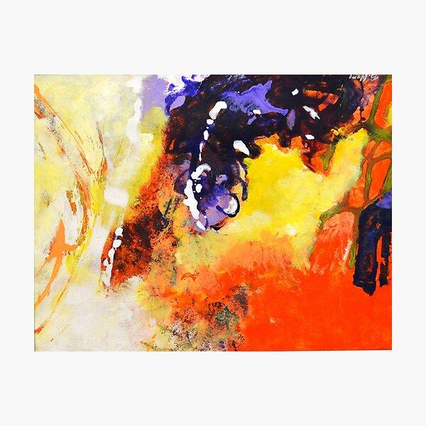 Deluxe 2 Photographic Print