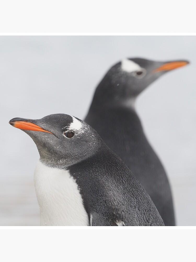 Penguin Pride  by AntarcticShop