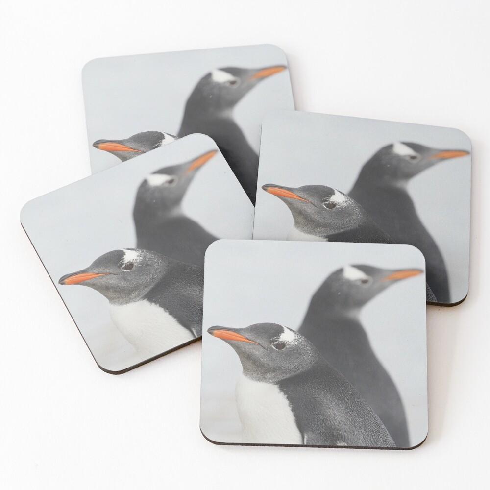 Penguin Pride  Coasters (Set of 4)
