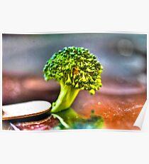 Micro Photography of Broccoli Poster