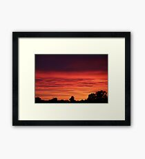 Looking out of my Window II Framed Print