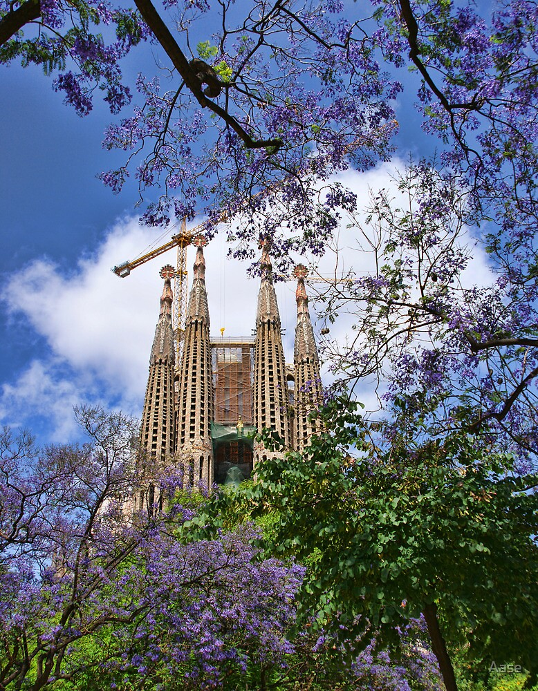 Sagrada Familia by Aase