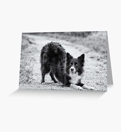 Hey!! Greeting Card