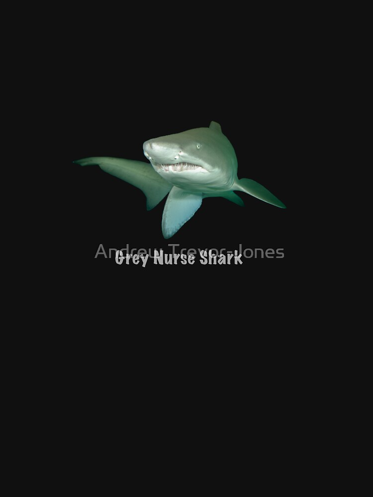 Grey nurse shark - T-shirt by andrewtj