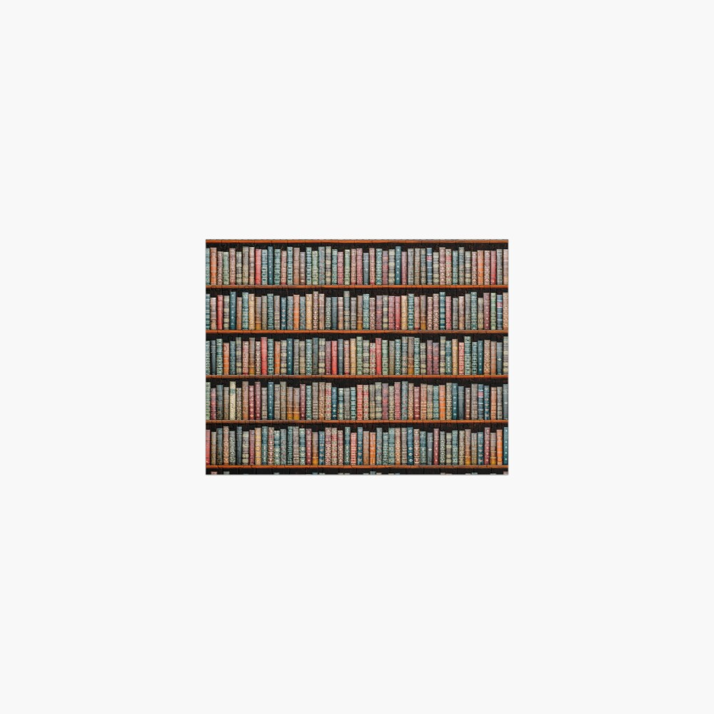 The Library Jigsaw Puzzle