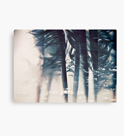 emotion: wishes Canvas Print