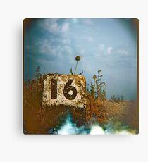 #16 Metal Print