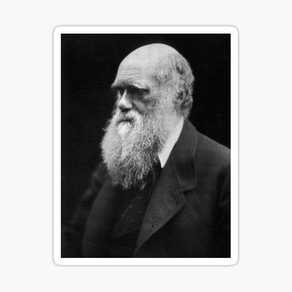 Darwin portrait Sticker